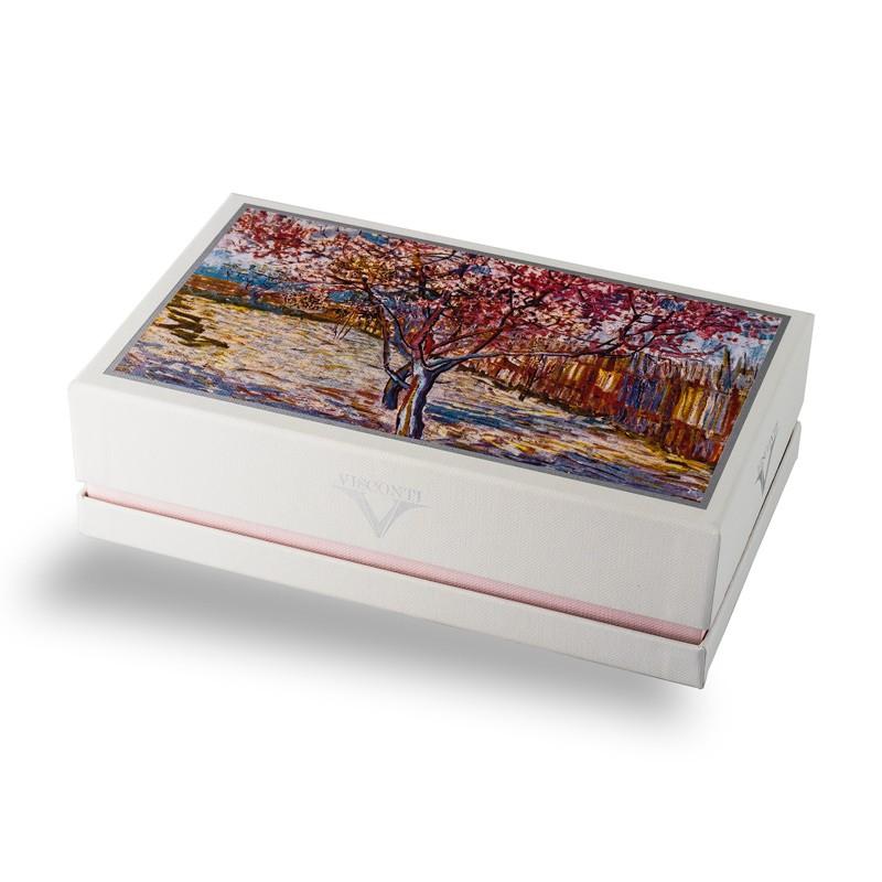 Penna stilografica Visconti Van Gogh Souvenire De Mauve Lema San Miniato confezione regalo